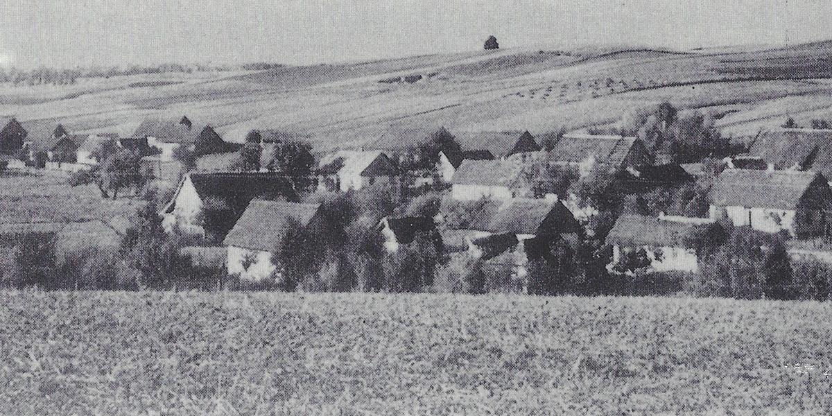 Wolhyniendeutsche